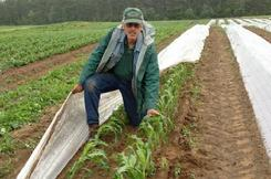 Farmer Dave, riverside Farm, North Berwick, Maine