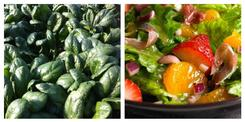 Spinach Salad Recipe | Riverside Farm
